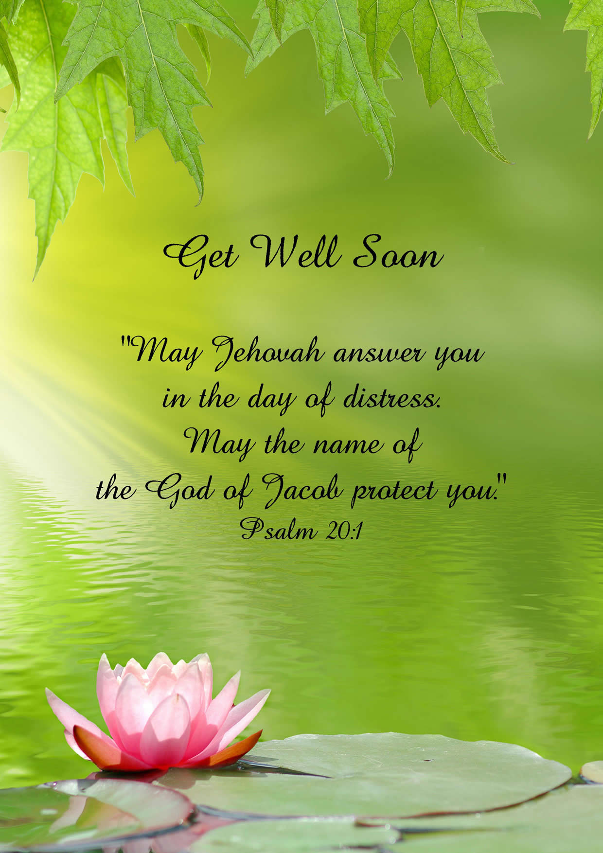 Greetings Card Get Well Jehovahs Witness Theocratic Ministry Supplies Get Well