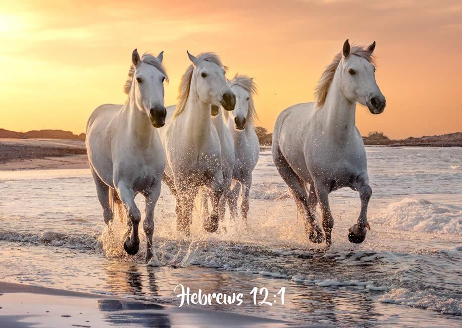 GREETINGS CARD - Endurance Hebrews 12:1